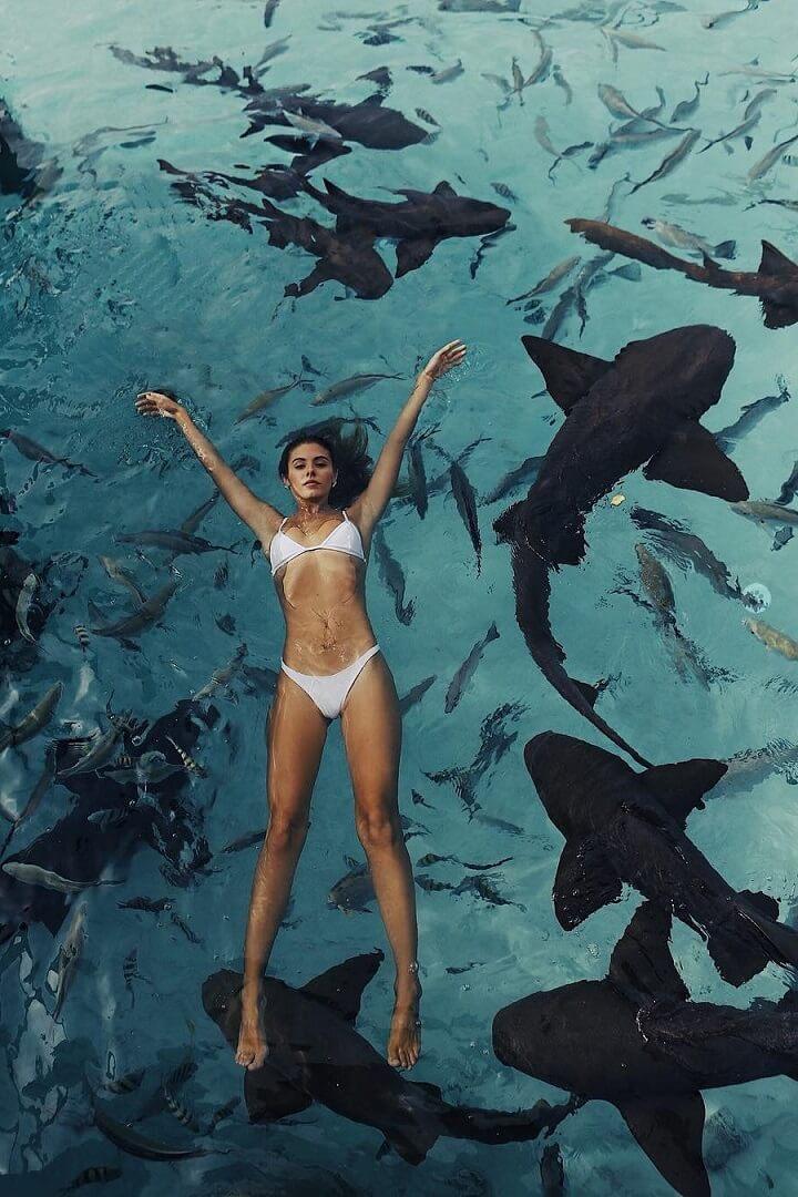 bano-entre-tiburones