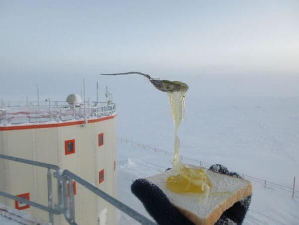 comiendo-Antartida