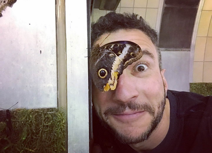foto-mariposa