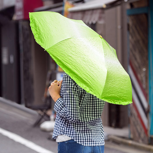 paraguas-lechuga