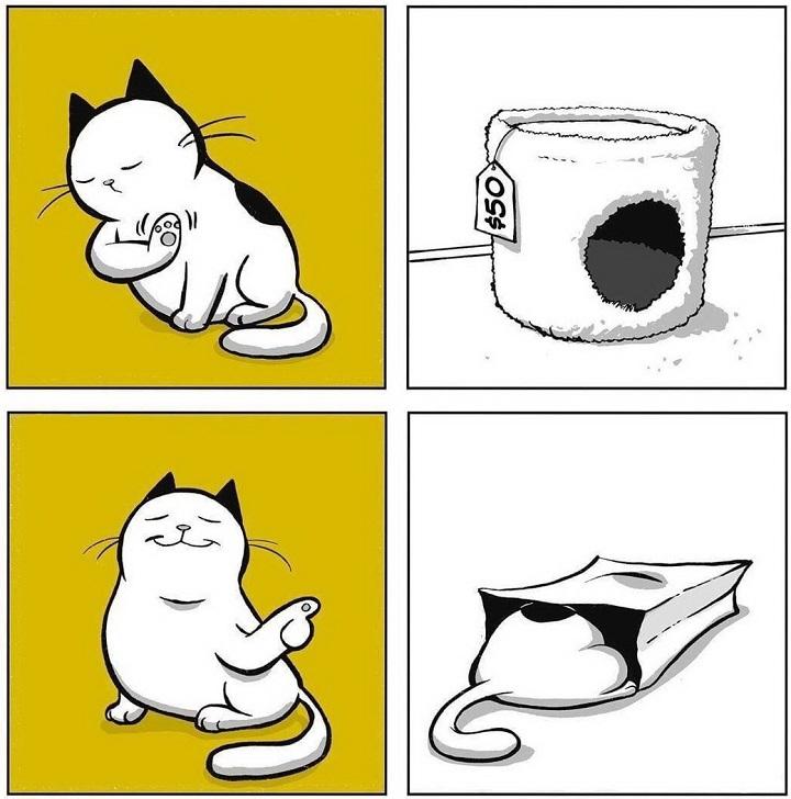 los-gatos-y-las-bolsas