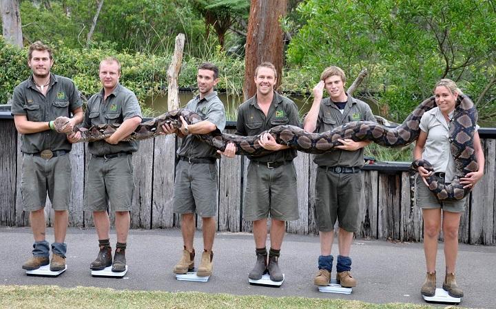 un-dia-cualquiera-en-Australia