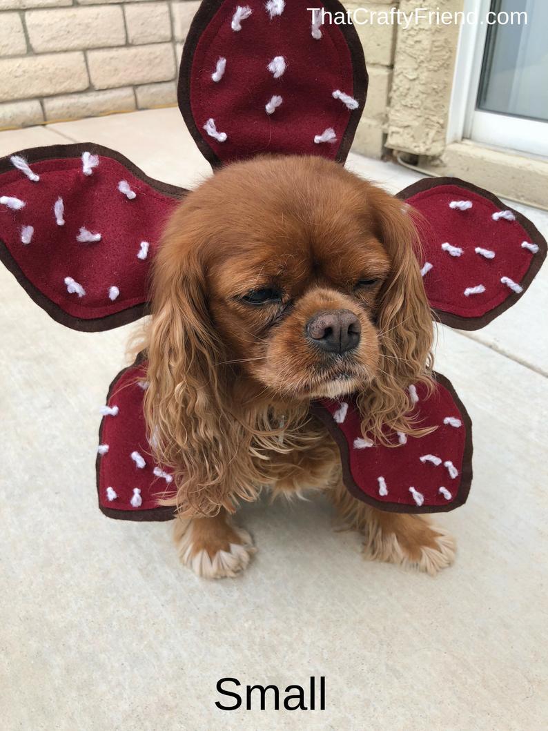 disfraz-Demogorgon-perro