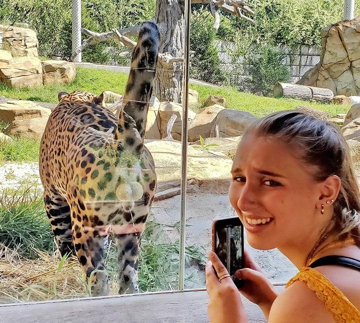 la-mejor-foto-del-zoo