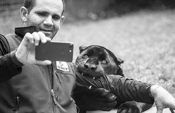 selfie-salvaje
