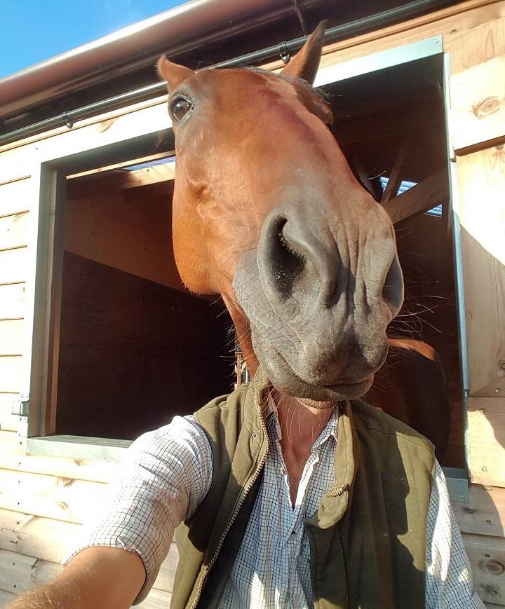 hombre-con-cara-de-caballo