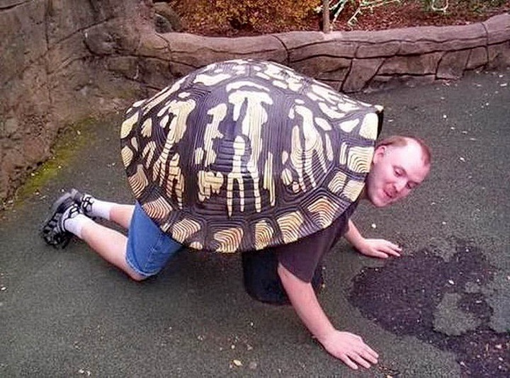 tortuga-humana