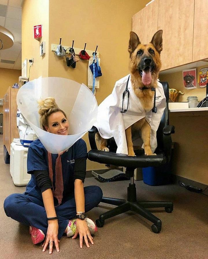 cambio-de-papeles-en-el-veterinario