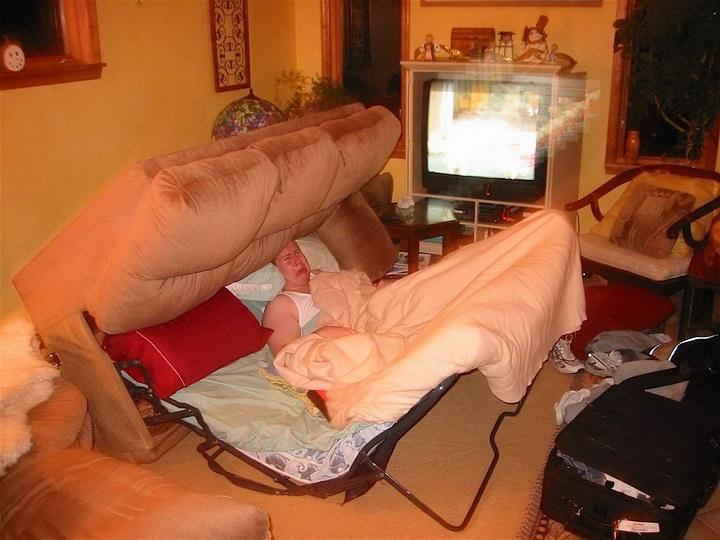 sofa-cama-carnivoro