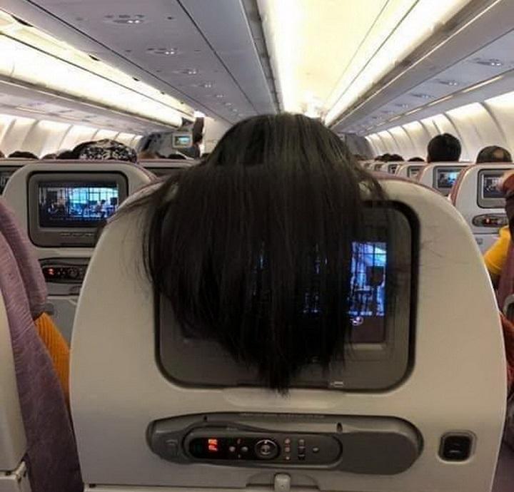 pelo-avion