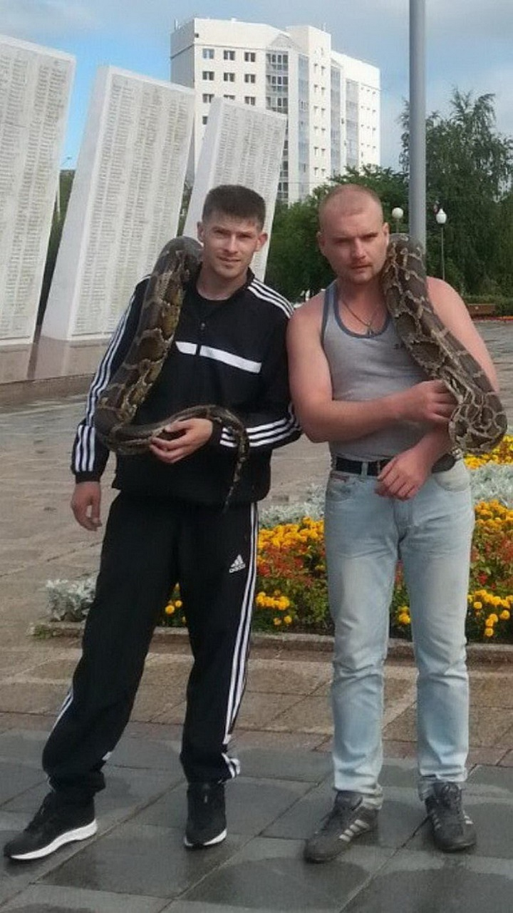 rusos-chungos