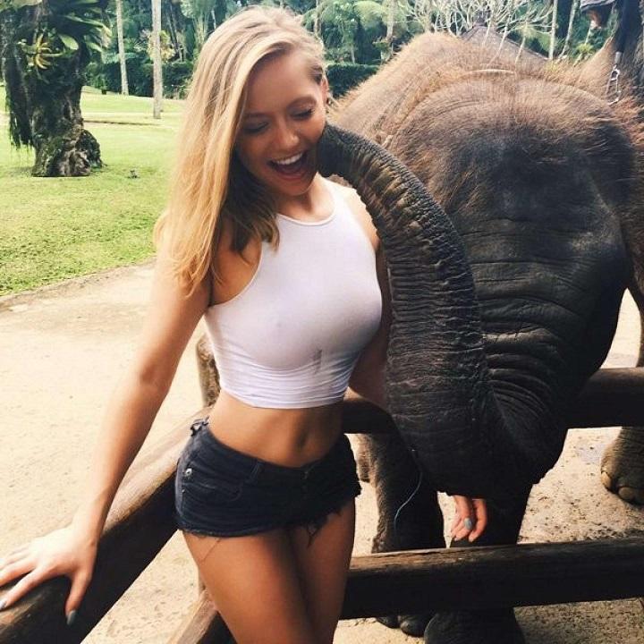 elefante-besucon